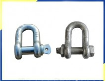 Dee Shackle with Screw Pin/D Shackle with Safety Bolt
