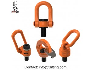 China G80 swivel standard lifting lugs for Moulds