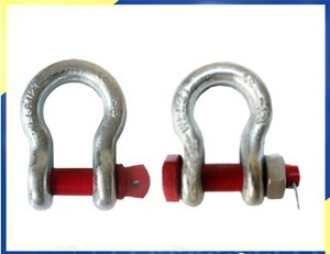 Safety Screw Pin Bow Shackle/Bolt Type Bow Shackle