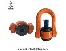 SUSPENSION lifting POINTS/ swivel shackle