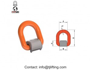 Vertical d-ring/welded D ring