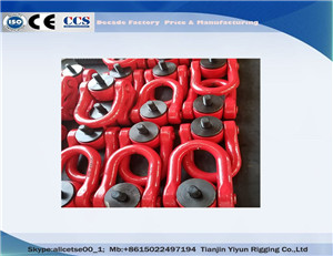 YDS Forged Universal Swivel Shackle Swivel Hoist Ring For Mining & Power Generation