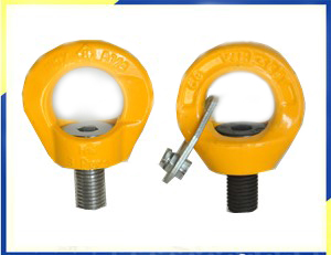 Anillo de elevación giratorio SS grillete para accesorios de navíosSS Swivel Shackle Hoist Ring for Marine Rigging