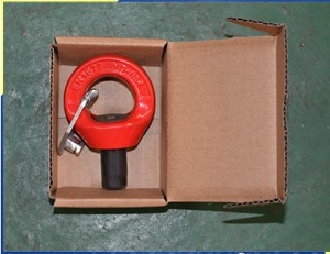 SS Swivel Shackle Hoist Ring for Marine Rigging