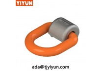 G80 Forged Alloy Steel D Ring with Wrap and Weld On Point For Lifting