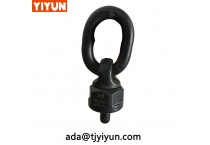 Lifting Equipment Rotating Lifting Point and Swivel Eye Bolts for Lifting